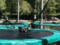 Sauts en bungee Trampolines