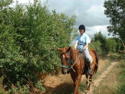 Ripaud Equitation