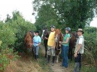 Balade a cheval en Vendee.JPG