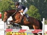 Equitation a Fontenay le Comte
