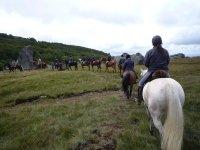Balade Equestre dans diverses regions en ete