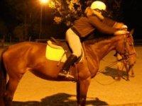 Equitation en Rhone Alpes