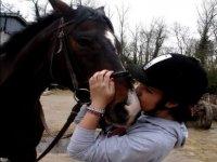 Le cheval et sa cavaliere