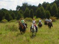 Randonnee equestre dans la nature