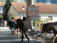 Fontaine de Vaucluse a cheval
