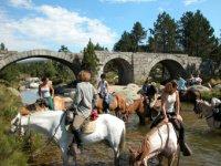 Pont du Tarn a cheval