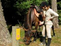 Randonnee equestre pour les jeunes