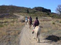 Sortie itinerante equestre en hiver