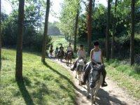 Chemins boises a dos de cheval.JPG