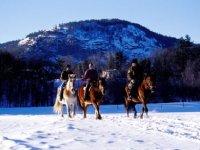 Voyage equestre dans les montagnes
