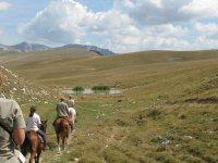 Randonnee equestre nature