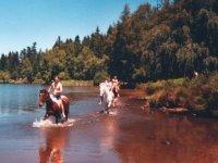 Sejours equestres en pleine nature