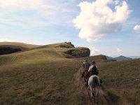 Sorties equestres dans le departement de la Loire