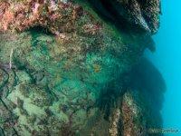 Des decouvertes uniques sous l eau