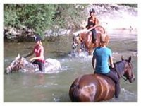 Sortie equestre jeune