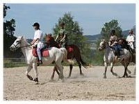 Stage Equestre dans les Bauges