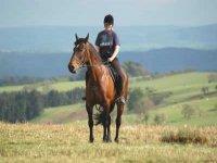 Faire du cheval en Haute Savoie