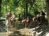 Tourisme Equestres Haute Savoie