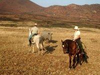 Voyage Equestre en Afrique du sud