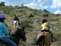 Randonnees equestres dans la Haute Savoie