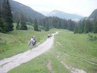 Sur les chemins de Haute Savoie