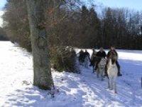Cheval en region Rhone Alpes