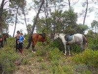 randonnée a cheval montagne de lure