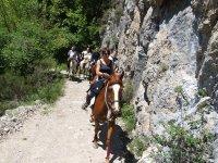 Aventure equestre dans le Verdon