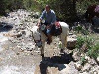 Pause rafraichissante pour cheval et cavalier