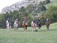 Randonnees equestre en Provence pres de Chambaresc