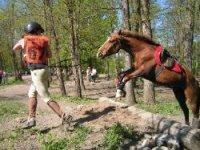 Equitation loisirs dans les Hautes Alpes