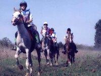 Passion du cheval avec la Ferme Equestre de Sardin