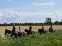 Cheval et tourisme equestre en Gironde