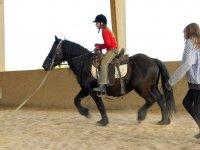 Lecons de cheval pour les jeunes cavaliers