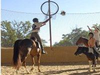 jeux equestres et horse ball