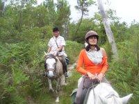 Randonnee equestre pour debutant