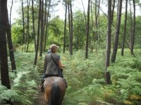 Sortie de pleine nature en Gironde