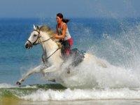 Randonnée semaine A cheval siur la cote d'Argent