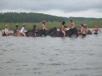 Sortie Equestre dans les Landes