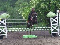 Equitation en Ecole