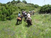 Tourisme Equestre pour les groupes dans les Landes
