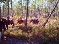 Sejours et vacances equestres