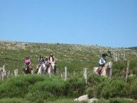 Randonnee equestre Mont Lozere