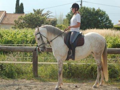 Kalinka Loisirs Equestres