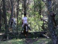 sortie equestre dans le Gard