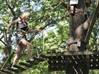 En avant pour l aventure dans les arbres