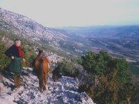 Les Cevennes avec Grand Causse Arabians