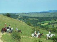 balade a cheval dans les Grands Causses