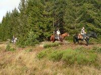 Pres de Margeride a cheval
