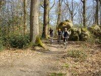 promenade VTT en forêt de Fontainebleau